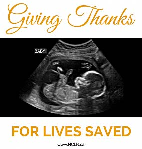 Have a Pro Life Thanksgiving