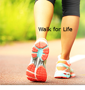 Alpha Pregnancy Annual Walk for Life